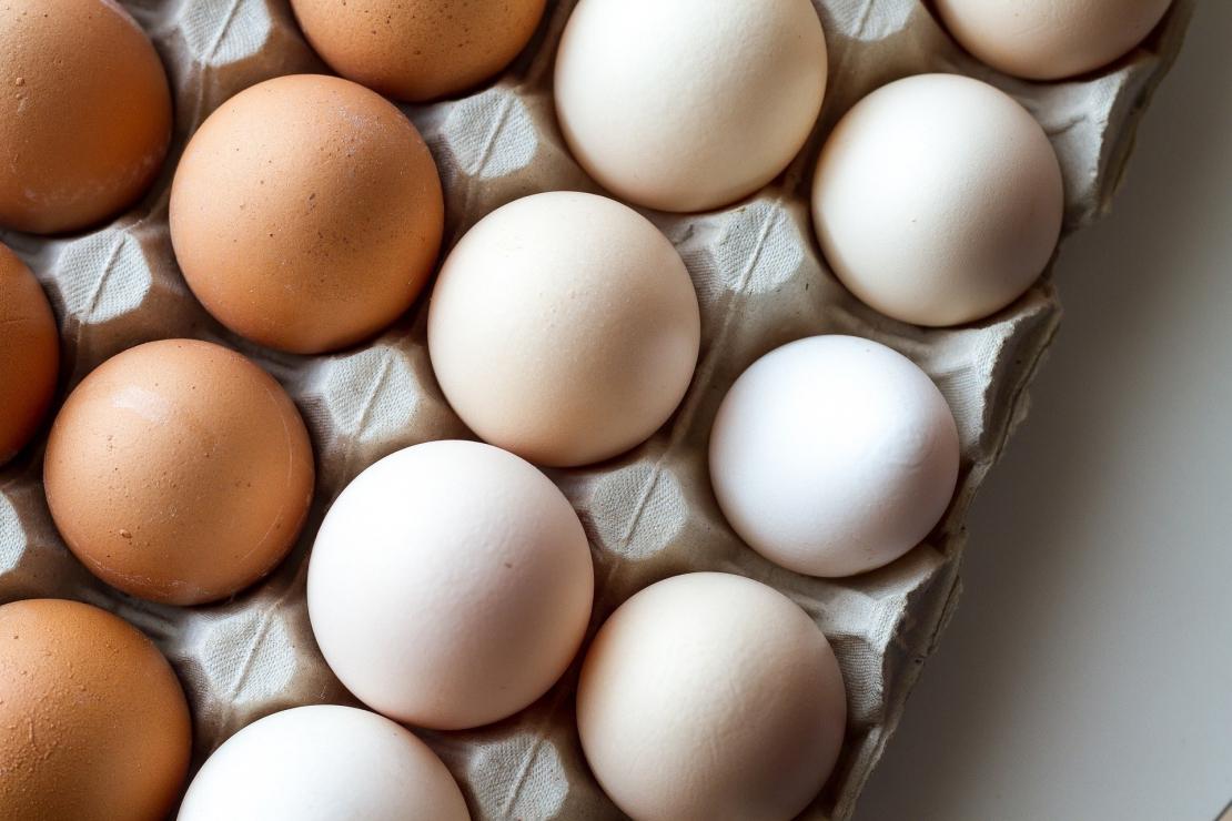 Egg White 3048118 1920